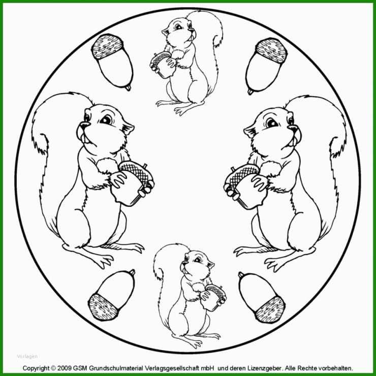 eichhörnchen basteln vorlage zum ausdrucken  kostenlose
